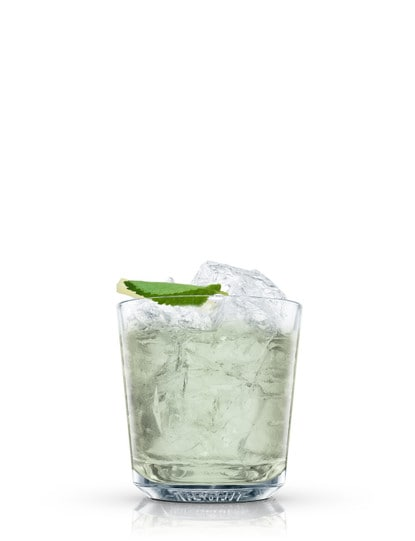 absolut bluey against white background