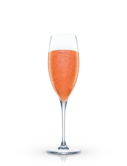 Champagne Passion