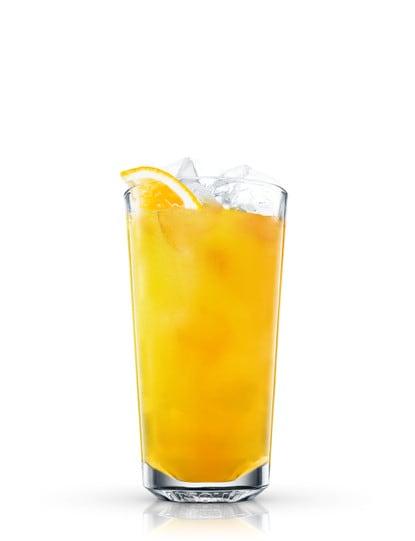 Warhol Orange
