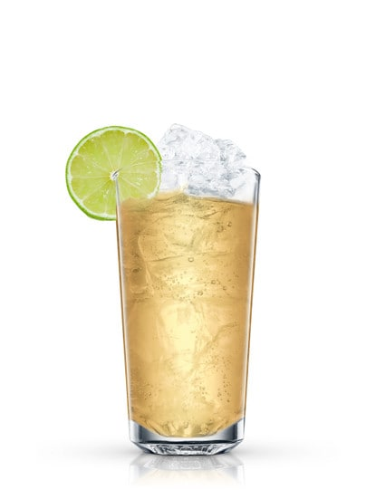 absolut wild mule against white background