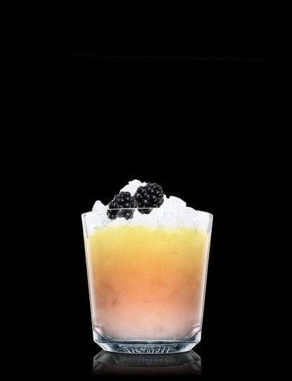 Absolut Ruby Bramble