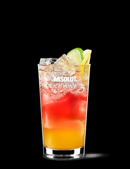 absolut punch