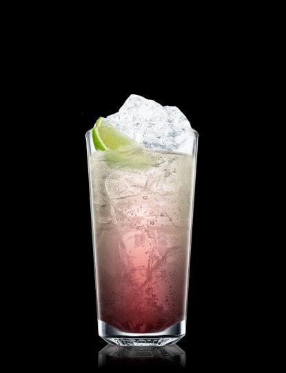 sloe gin rickey