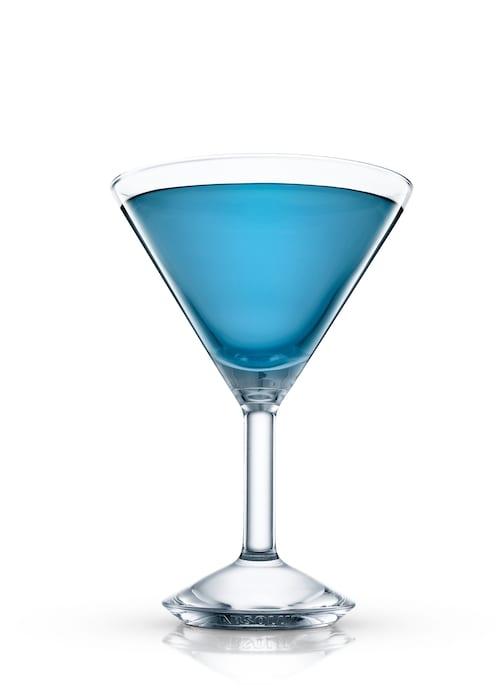 blue bird against white background