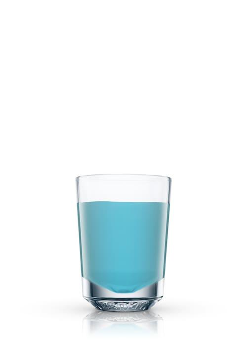 blue jay against white background