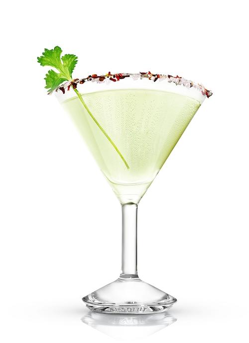 absolut cilantro rita against white background