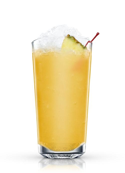 honolulu juicer against white background