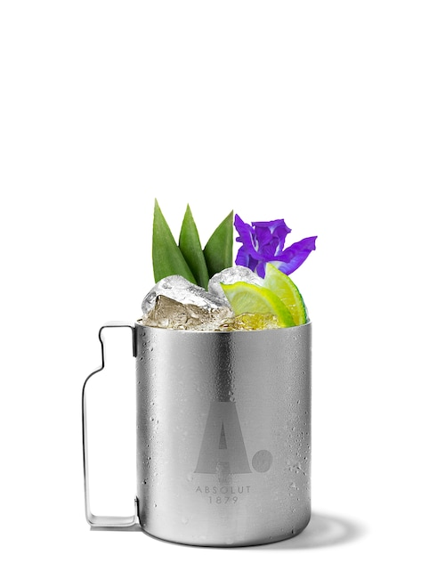 desert mule against white background