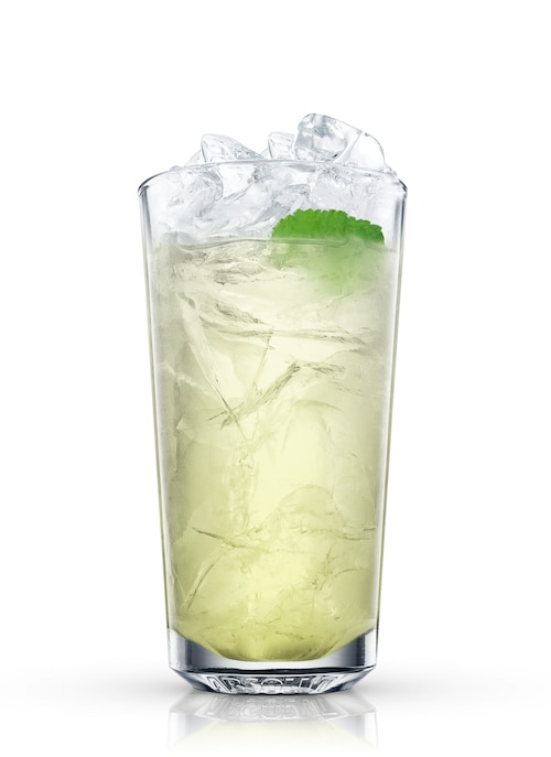 absolut wild mojito against white background