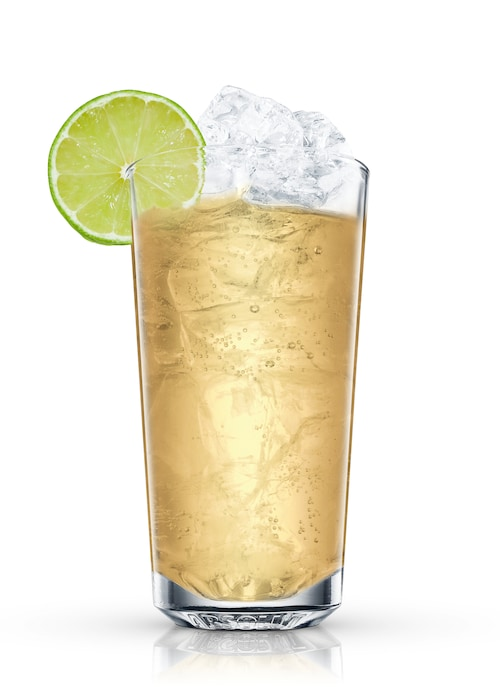 absolut ginger tea against white background