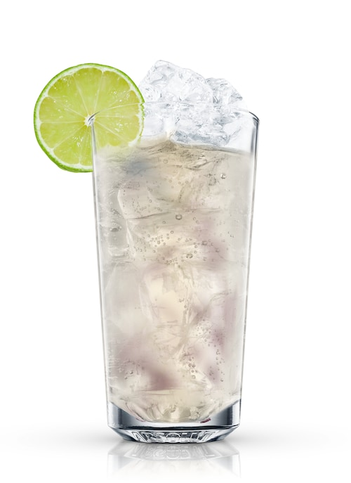 blueberry and ginger fizz against white background